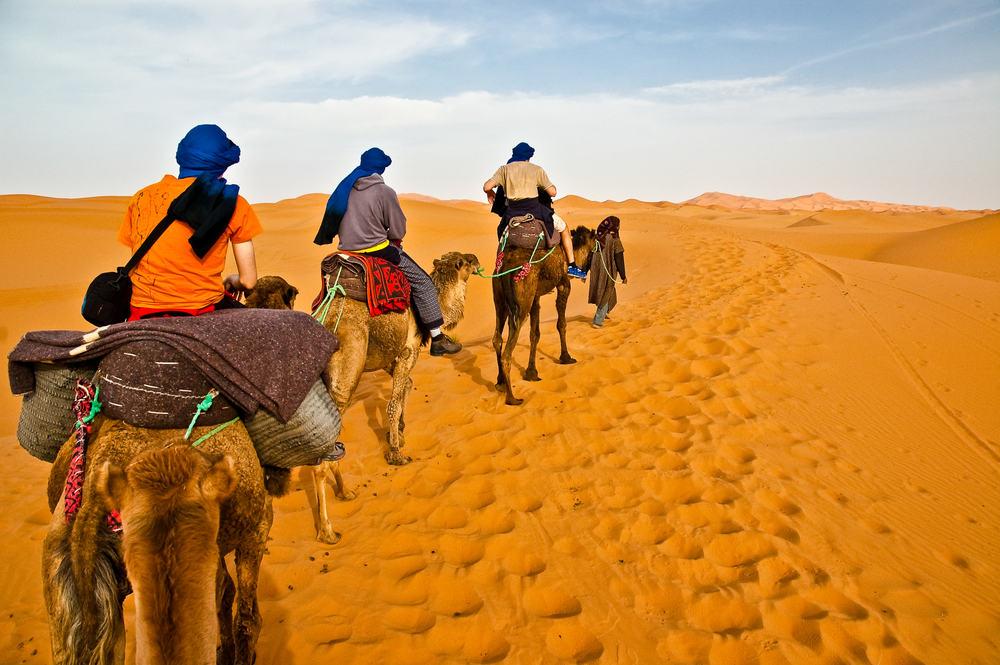 Kameltur i Sahara ørkenen - Marokko
