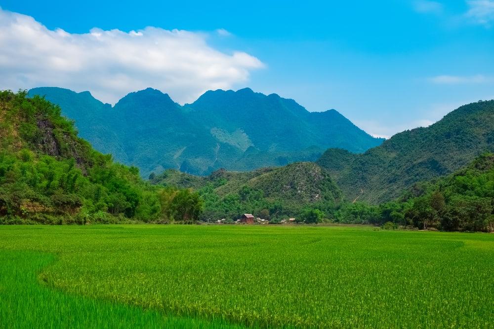 Mai Chau dalen i Vietnam