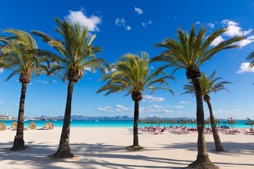 4-stjernet hotel på Mallorca