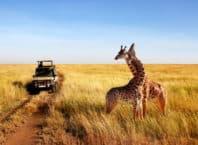 Familietur til Tanzania