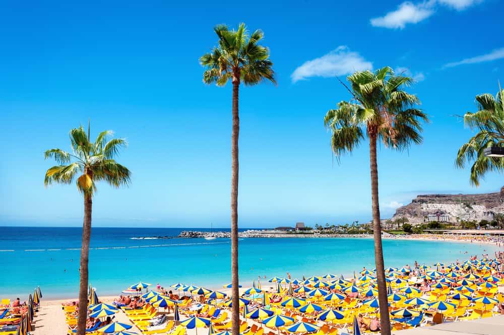 Playa de Amadores - Gran Canaria i Spanien