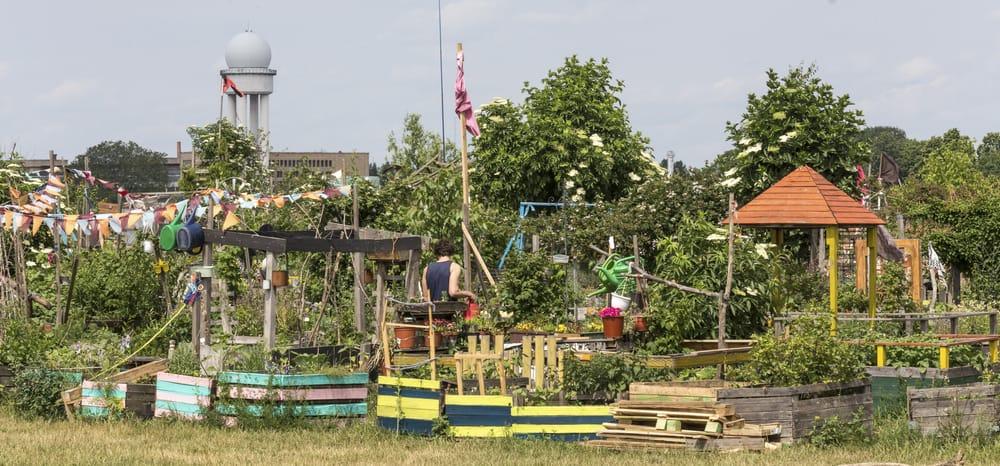 Urban gardening i Tempelhof - Berlin