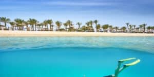 Dykning i Hurghada - Egypten
